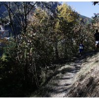 Mini-Trail de Tende 2017
